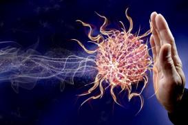 XVI. am 07.10.2020: Mit Naturheilkunde zur starken Abwehr und einem intakten Immunsystem – von der Praxis in die Praxis