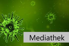 8.7.2020: Viruserkrankungen - naturheilkundliche Therapiekonzepte für ein starkes Immunsystem